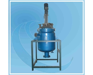 300L Reactor with PTFE