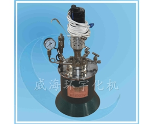 3L Laboratory Reactor with PTFE