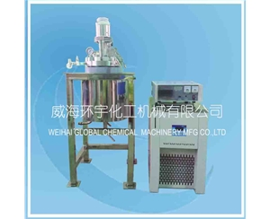 5L Stainless Steel Reactor