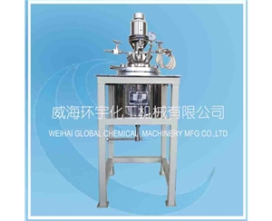 High Pressure Reactor with Magnetic Seal