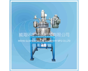 20L Stainless Steel Reactor