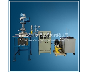 2L Reactor with Visual Glass & Metering Pump