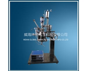 1L Glass Reactor with Constant Pressure Feeding Port