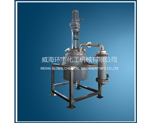 200L Reactor with Mechanical Seal