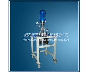 1L Lab Scale Stainless Steel Reactor