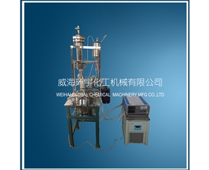 2L Lab Reactor with Vertical Condenser