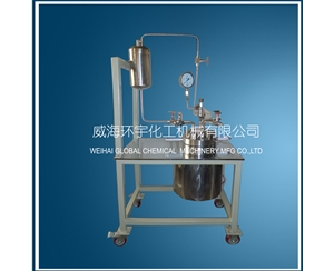 Stainless Steel High Pressure Reactor with Feeding Tank