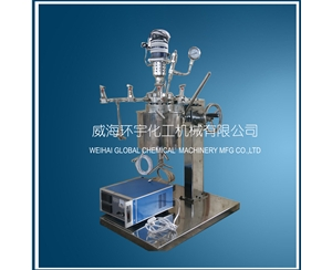 High Pressure Reactor with Lifting and Flip Device